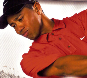 """Tiger Woods PGA Tour 06""  (Foto: EA)"