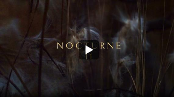 Craig Armstrong | Nocturne 11